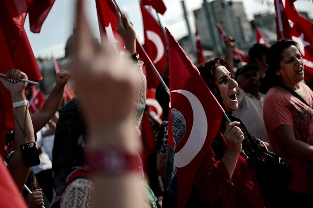 انقلاب درخت در ترکیه ادامه بهار عربی است؟