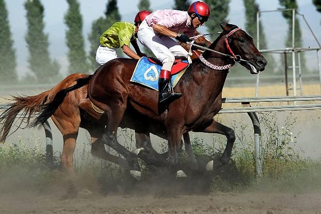 تصاویر مسابقات اسب دوانی در نوروزآباد تهران