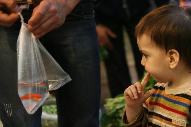 هزینههای شب عید ایرانی