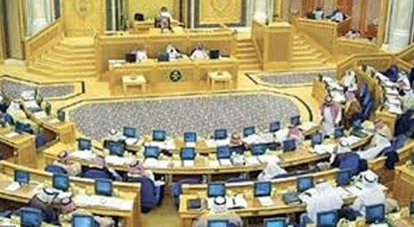 مجلس عربستان: زیان های بیمه اجتماعی عامل تصویب سیستم پشتیبان نبوده است