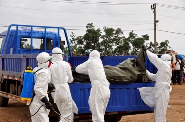 در پی گسترش سریع ویروس ابولا برخی کشورهای همجوار لیبریا که بیشترین تلفات و شیوع ویروس ابولا را شاهد بوده است ،مرزهای خود را بستند و ساحل عاج هم همه پروازهای خود را به کشورهای گینه، سیرالئون و لیبریا لغو کرد.