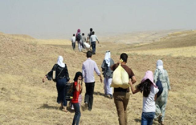 سازمان ملل: ترکیه برای اسکان هزاران کرد سوریه به کمک نیاز دارد