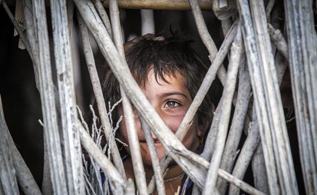 نماینده مجلس ایران: بیش از ۴ هزار نفر در سیستان و بلوچستان شناسنامه ندارند