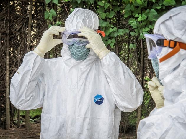 طی طریق ابولا از خفاش تا انسان