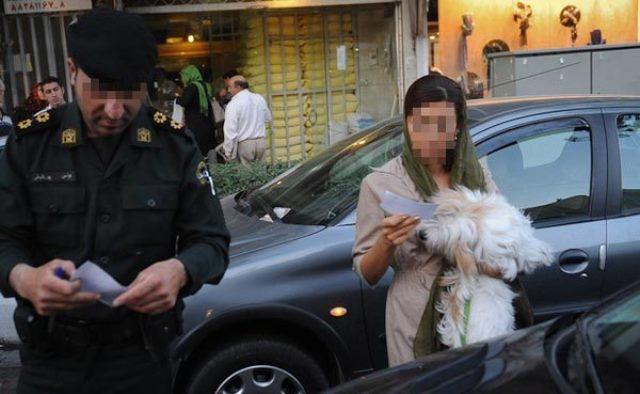 طرح نمایندگان مجلس ایران: شلاق و جریمه سنگین نقدی برای نگهداری سگ