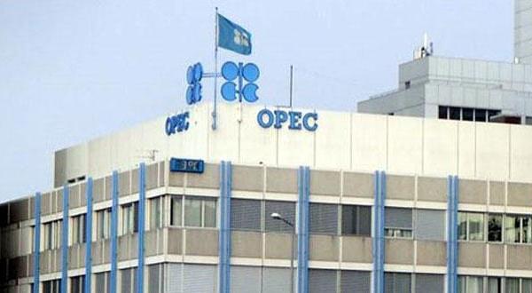 رئیس پژوهش های «اپک»: تقاضا در حال افزایش است و دوران نفت پایان قریب الوقوعی ندارد
