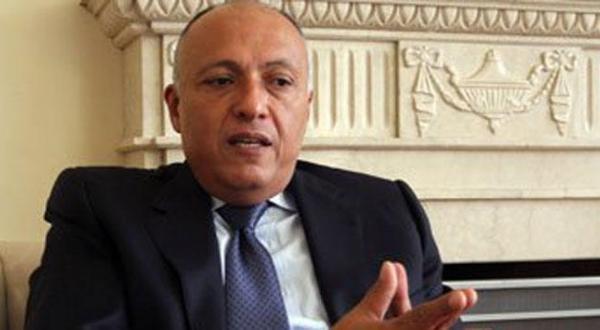 شورای هماهنگی سعودی – مصری