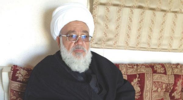 الطفیلی به «الشرق الأوسط»: حزب الله و ایران مزدوران روسیه هستند