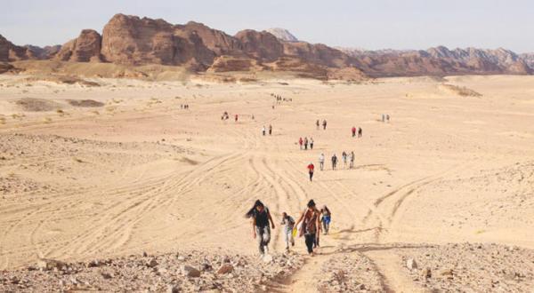 گردشگران در صحرای سینا
