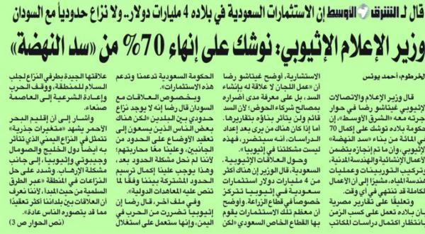 وزارت خارجه مصر: از آدیس آبابا اطمینان خاطر گرفتیم