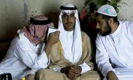 منابع آگاه : اعزام حمزه بن لادن به افغانستان با میانجی گری تهران