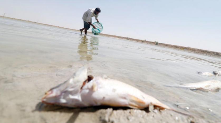 شوری به بحران آلودگی آب بصره دامن زد