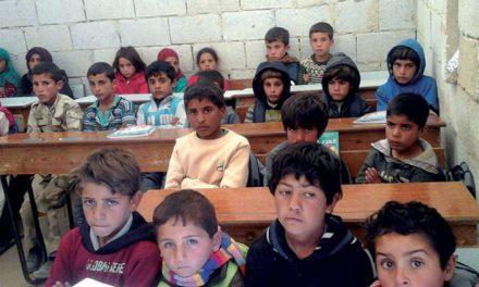 کلاف سر در گم منابع درسی برای دانشجویان و دانشآموزان سوری