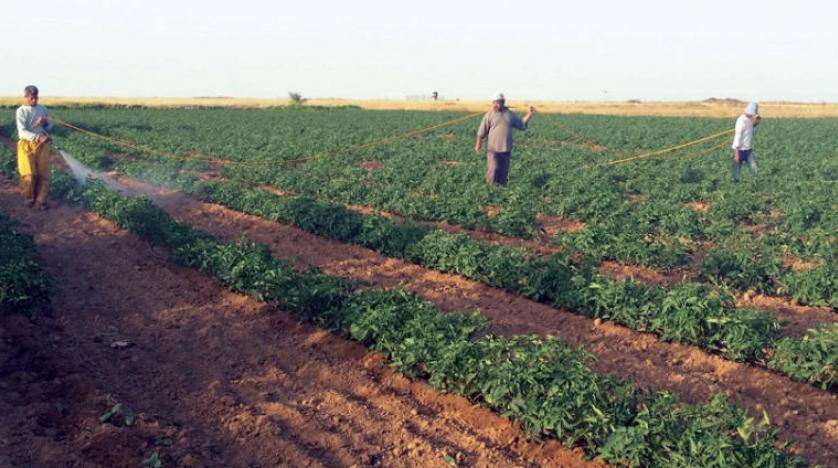 تلاش اسرائیل برای بیرون راندن کشاورزان از غزه