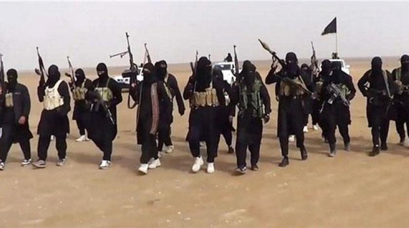 دو گزینه پیکارجویان انگلیسی؛ فرار یا نبرد در سوریه