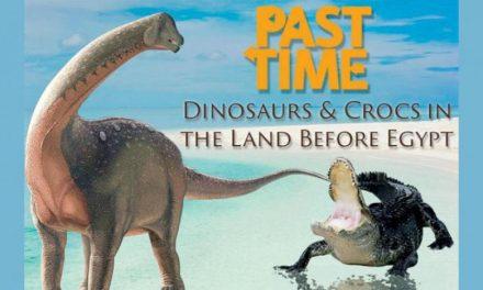 کشف تمساح ۷۳ میلیون ساله در مصر