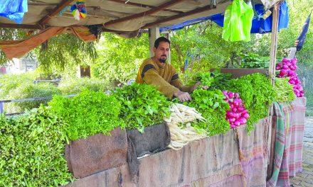 بیخیالی فروشنده سبزیجات از عضویت در «الحشد الشعبی»