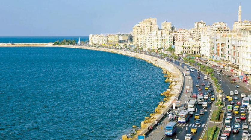 مصر گردشگران عاملِ تغییر رفتار «کوسهها» را تحت پیگرد قانونی قرار میدهد