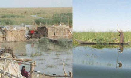 موزهای جدید برای نمایش گوشهای از میراث و زندگی هورنشینان عراق