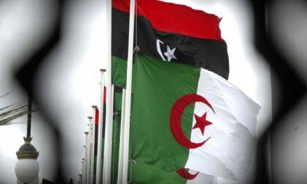 انتقاد لیبی و الجزایر از اقدام ترکیه برای ارسال محموله اسلحه