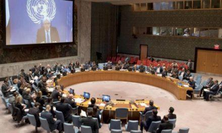 گریفیتس خواستار تصویب مجوز نظارتی سازمان ملل بر آتشبس در الحدیده شد
