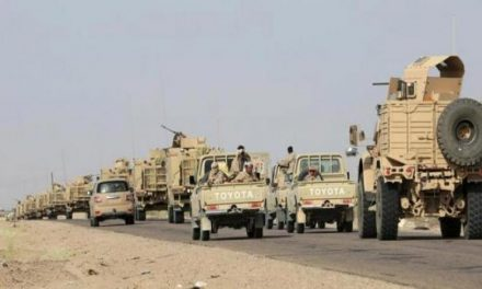 ارتش یمن مناطق جدیدی در استان صعده را آزاد کرد
