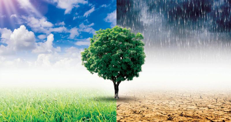 تغییرات اقلیمی در ایجاد نزاعها و انقلابها نقش داشتهاند