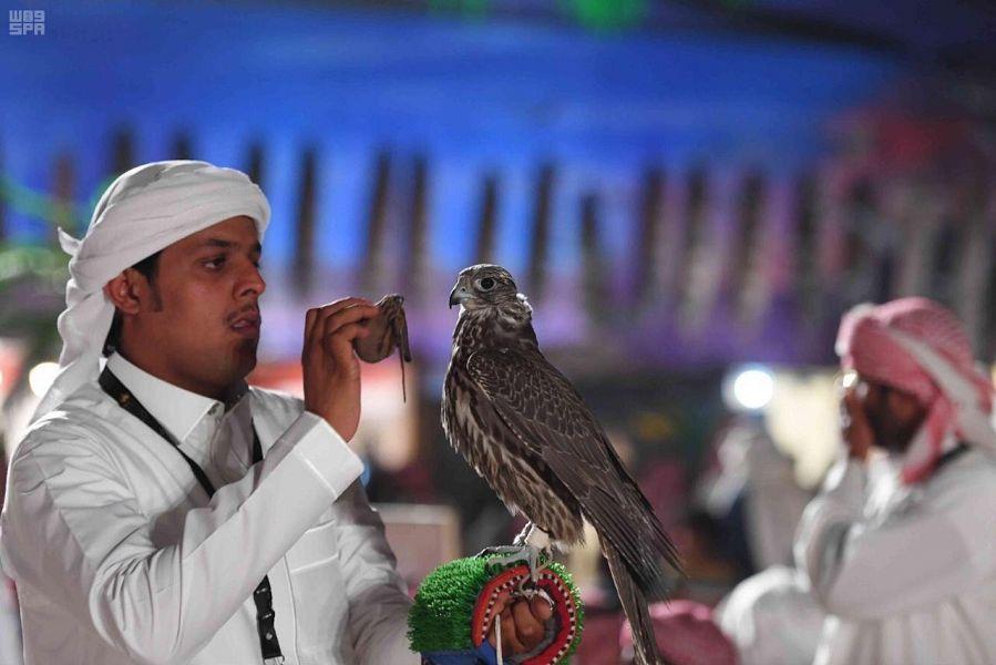 مسابقهٔ شاهینهای شکاری ملک عبدالعزیز با شرکت ۱۷۰۰ پرنده
